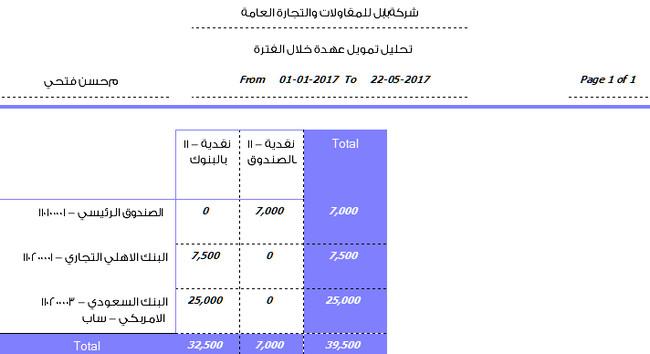 تقرير تحليل تمويل عهدة حسن فتحي